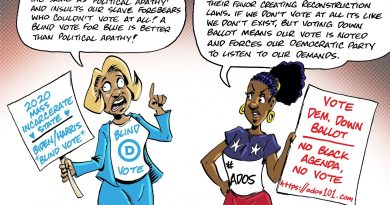 9.5.20 – Blindly Voting Blue versus True Political Engagement & Voting Strategy. Art & Commentary by Muhammad Rasheed (mrasheed.com)